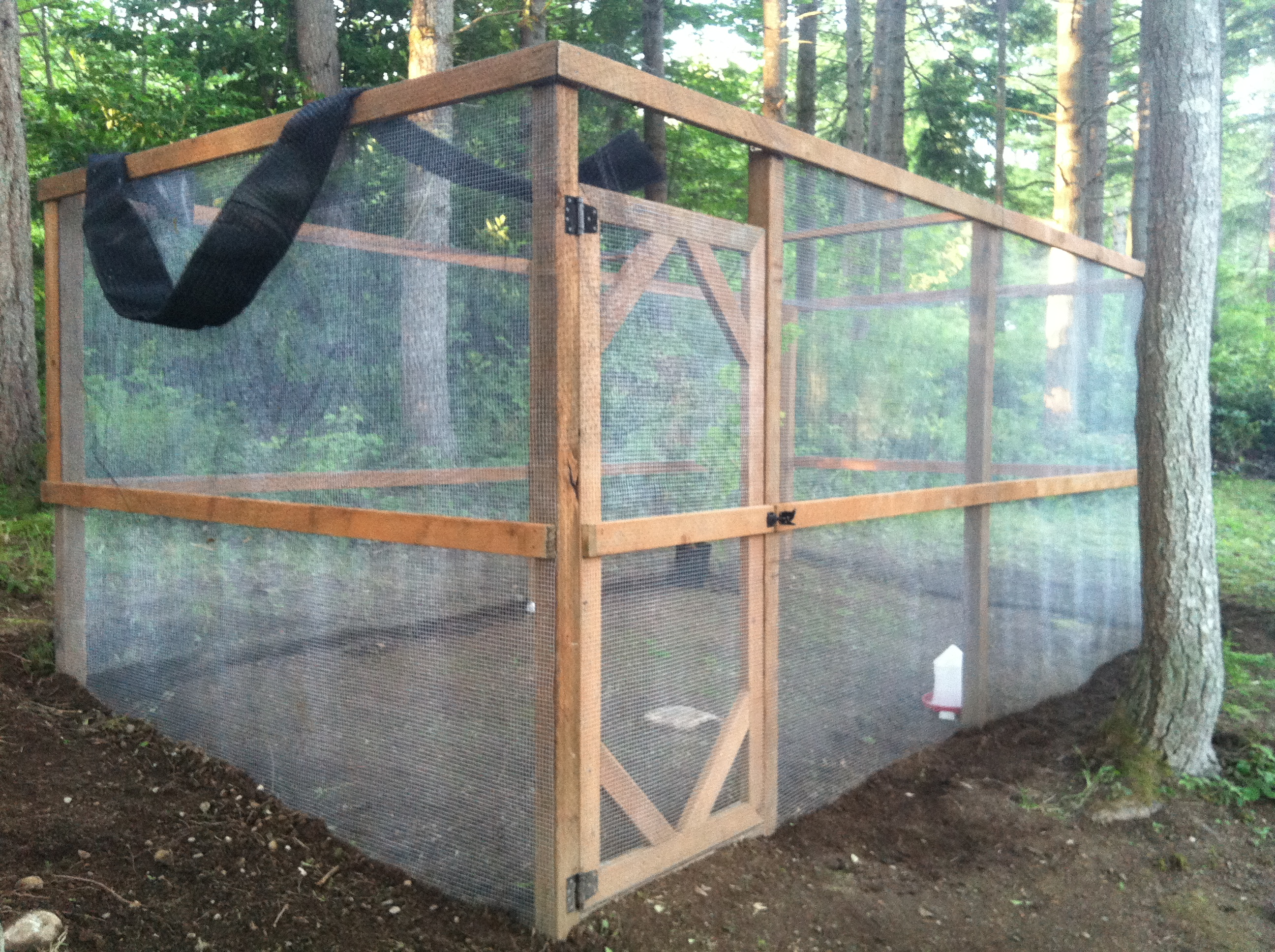 Cooper sloan developer seattle wa aviculture for Building a quail house